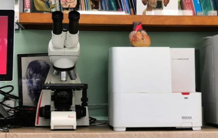 Prise en charge rapide et efficace grâce au Laboratoire d'analyses sanguines